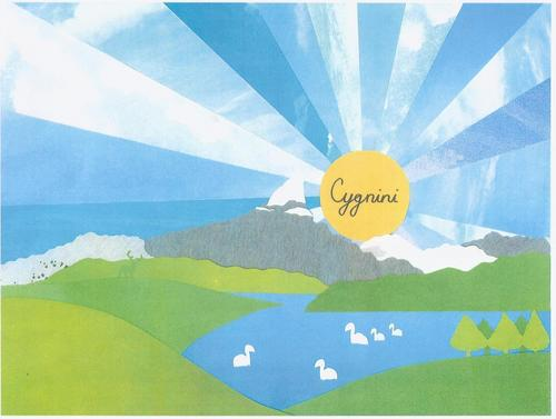 cygnini charity show
