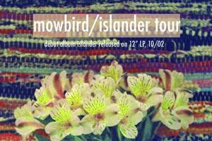 Mowbird Islander